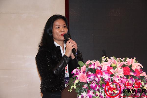 下年度供皮计划分析及中国市场战略报告--朱静珊