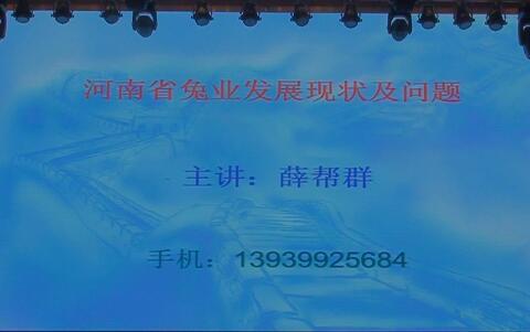 河南省兔业发展现状及问题